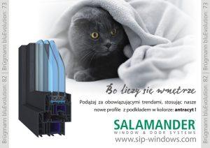 salamander_antracyt_3