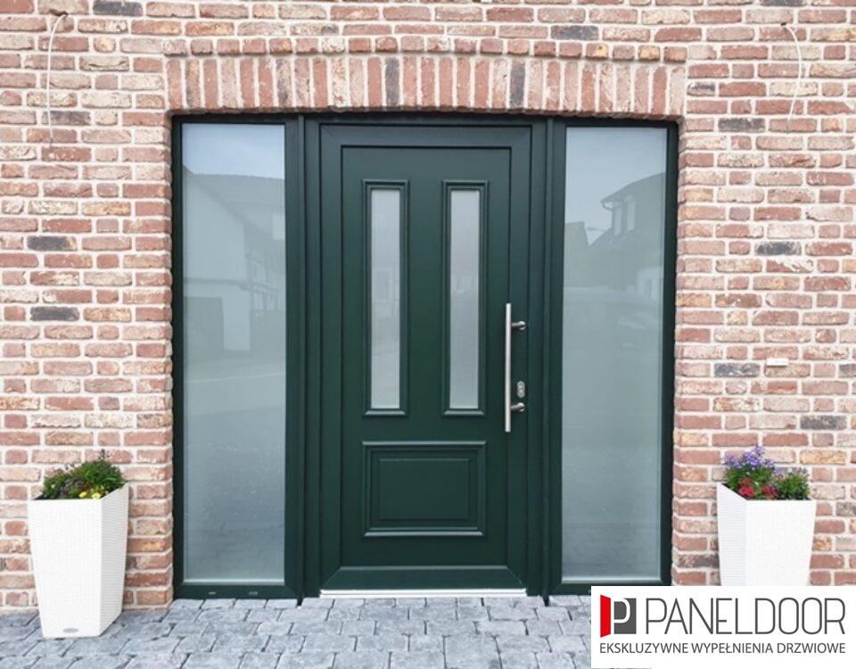 Drzwi z naświetlem paneldoor