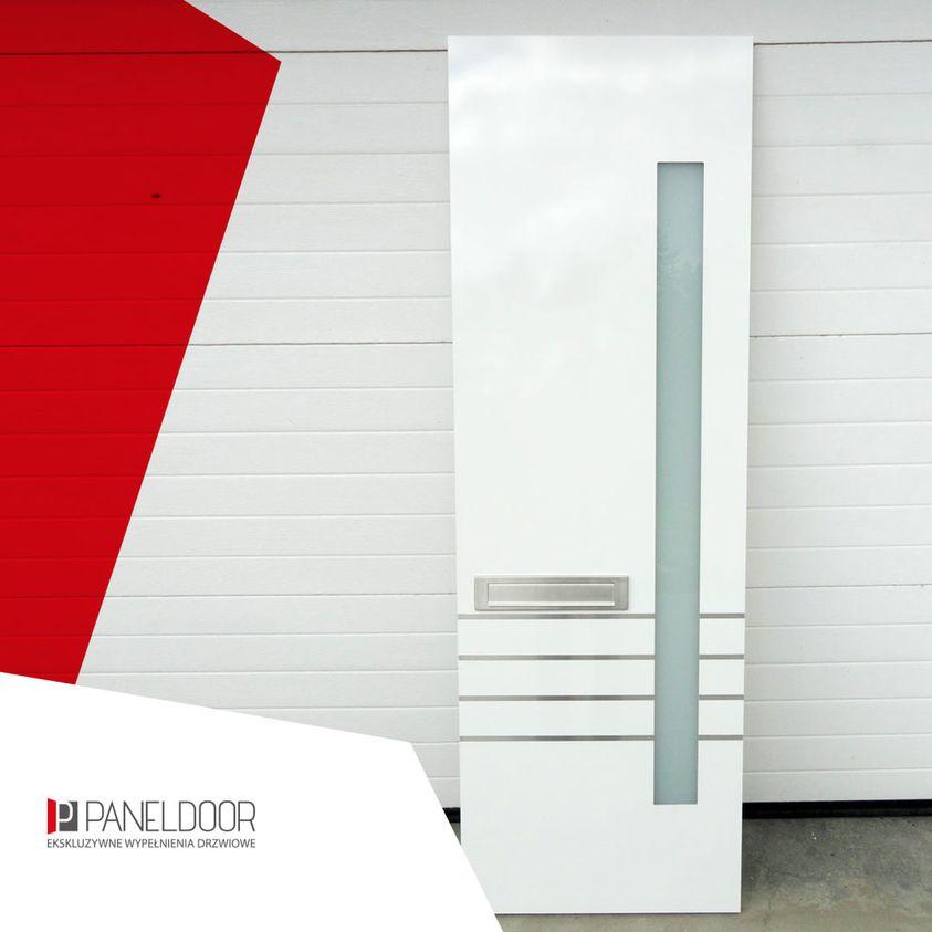 panel drzwiowy paneldoor