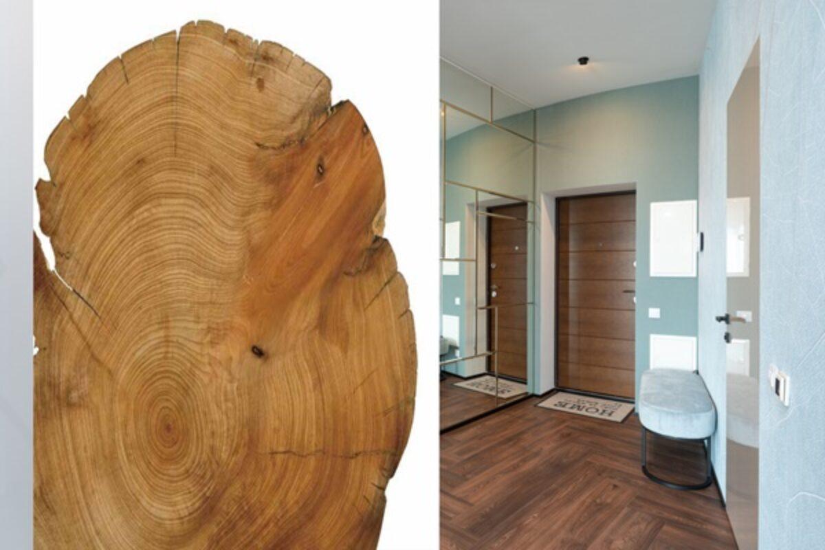 Nowe kolory, materiały i wygląd drzwi zewnętrznych od Paneldoor